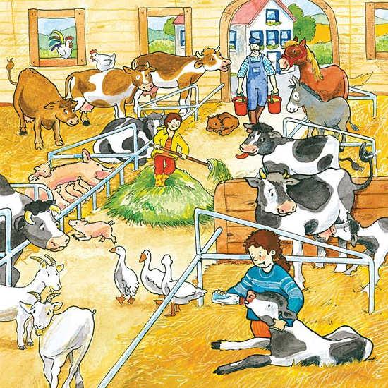 boerderij.jpg